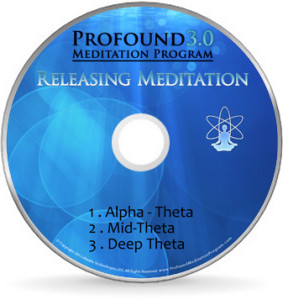 Profound Meditation Single CD