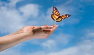 Release-Butterfly