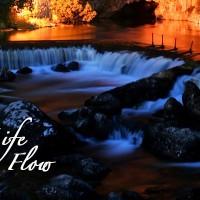 lifeflow